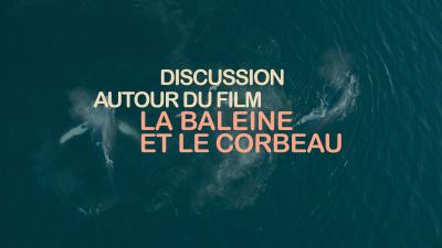 Discussion autour du film La baleine et le corbeau